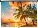 Экран настенный ScreenMedia Economy-P 150х150см SPM-1101
