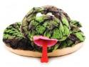 Мягкая игрушка змейка Gulliver Змей изумрудный плюш синтепон зеленый коричневый белый 40 см