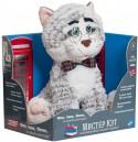 Интерактивная игрушка Intek International Мистер Кэт от 3 лет серый MRC01\\M