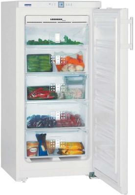 Морозильная камера Liebherr GNP 1956-23 001 белый холодильная камера встраиваемая liebherr uik 1620 23