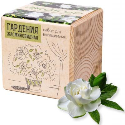 Набор для выращивания ЭКОКУБ Гардения жасминовидная ECB-01-18 набор для выращивания магнолия 7 6х7см 1269922