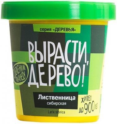 Набор для выращивания ВЫРАСТИ ДЕРЕВО Лиственница сибирская zk-049 наборы для выращивания вырасти дерево набор для выращивания розмарин
