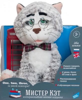 Интерактивная игрушка Dream Makers Мистер Кэт от 3 лет серый
