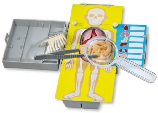 Игровой набор 4m Юный врач. Хирургия 00-03373 4m юный врач скелет человека 00 03375