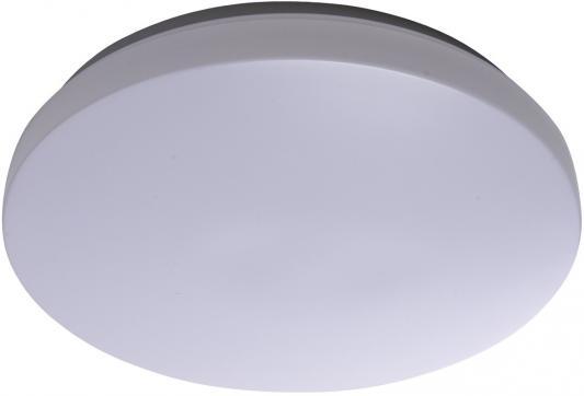 Потолочный светодиодный светильник MW-Light Ривз 674013301