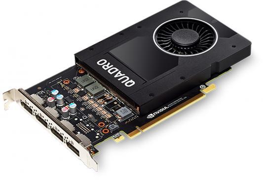 Видеокарта PNY Quadro P2000 VCQP2000-BLK-1 PCI-E 5120Mb 160 Bit OEM цена и фото