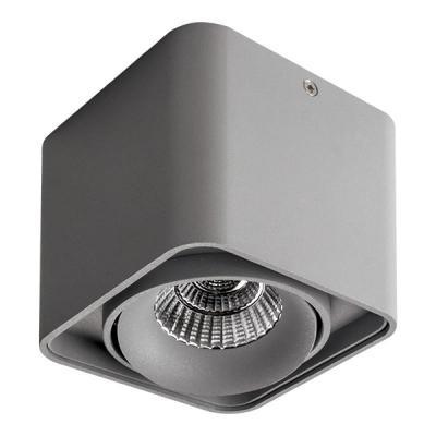 Купить Потолочный светильник Lightstar Monocco 212519