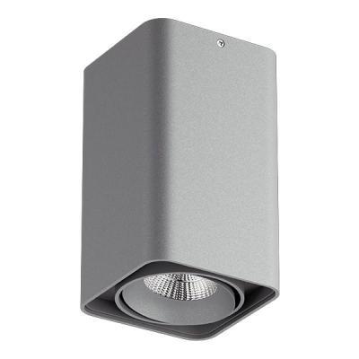Купить Потолочный светильник Lightstar Monocco 212539