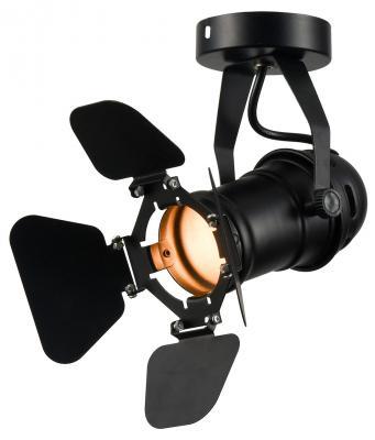 Потолочный светильник Lussole Loft Expression LSP-9838