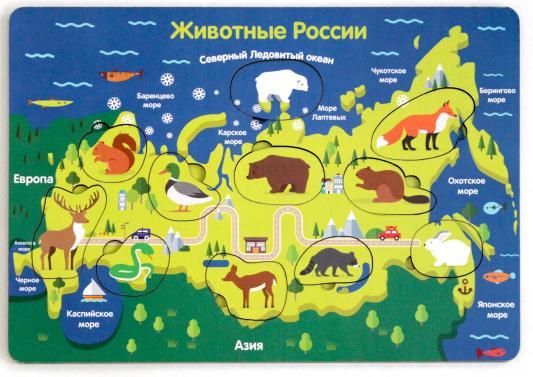 Рамка-вкладыш ТИМБЕРГРУПП Животные России книги издательство сзкэо биэ животные россии