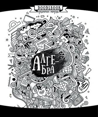 Тетрадь предметная ПОЛОТНЯНО-ЗАВОДСКАЯ ФАБРИКА Дудлинг-Бук. Алгебра 40 листов клетка скрепка