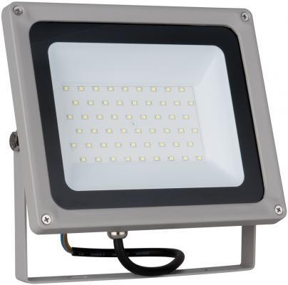 Прожектор светодиодный Elektrostandard 006 FL LED 50W 6500K 4690389101250 elektrostandard лампа светодиодная elektrostandard свеча на ветру сdw led d 6w 3300k e14 4690389085505