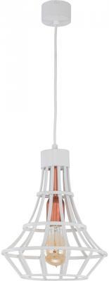Подвесной светильник Spot Light Riana 1030197 подвесной светильник spot light bosco 1711170