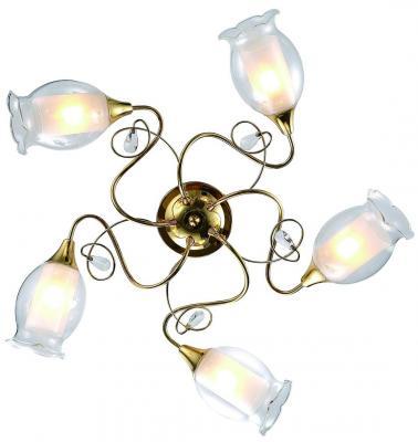 Потолочная люстра Arte Lamp Mughetto A9289PL-5GO люстра на штанге arte lamp modello a6119pl 5go
