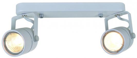 Спот Arte Lamp Lente A1310PL-2WH