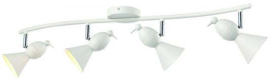 Купить Спот Arte Lamp Picchio A9229PL-4WH