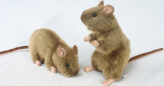 Мягкая игрушка крыса Hansa 2794 искусственный мех серый 25 см