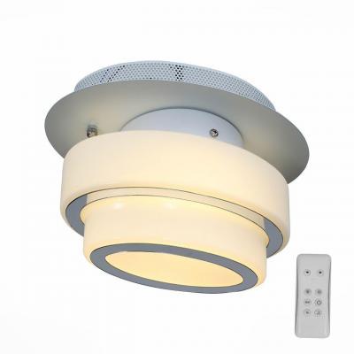 Потолочный светодиодный светильник с пультом ДУ ST Luce Ovale SL546.501.01 st luce светильник настенно потолочный st luce ovale sl546 501 01
