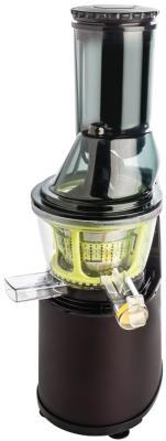Соковыжималка Scarlett SC-JE50S22 160 Вт пластик чёрный зелёный