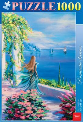 Пазл Hatber Романтические мечты 1000 элементов пазл hatber райский сад 340x460mm 500пз2 16969