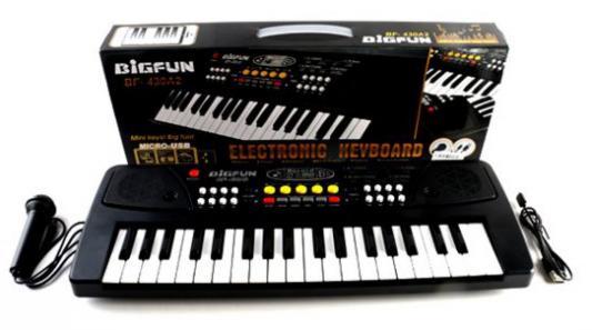 Купить Синтезатор Shantou Gepai Bigfun, черный, Детские музыкальные инструменты