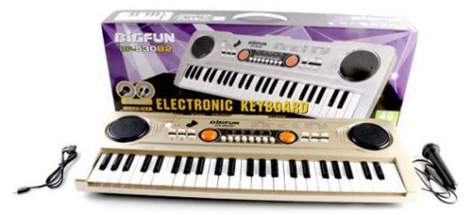 Купить Синтезатор Shantou Gepai Bigfun, в ассортименте, Детские музыкальные инструменты