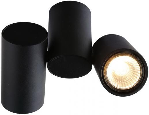 Потолочный светильник Divinare Gavroche 1354/04 PL-2