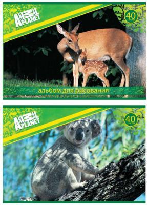 Альбом для рисования Action! Animal Planet A4 40 листов AP-AA-40 в ассортименте альбом для рисования action animal planet на гребне 40 листов в ассортименте