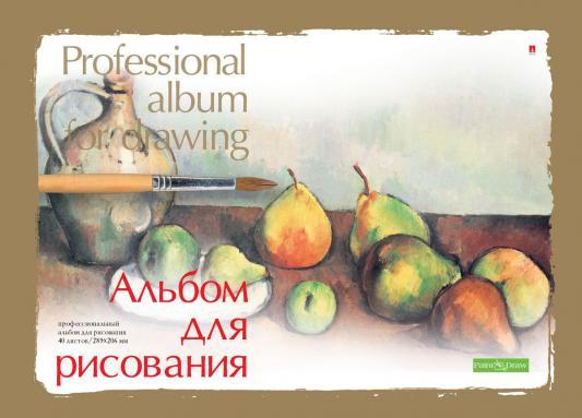 Купить Альбом для рисования Альт Профессиональный A4 40 листов 1-40-236 в ассортименте