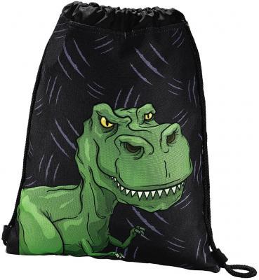Мешок для сменной обуви Hama Dino черный/зеленый 00139111