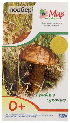 Развивающие карточки Умница Мир на ладошке цхай и грибное лукошко isbn 9785990959958