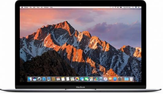 Ноутбук Apple MacBook 12 2304x1440 Intel Core i7 512 Gb 16Gb  HD Graphics 615 серый macOS Z0TY0002T