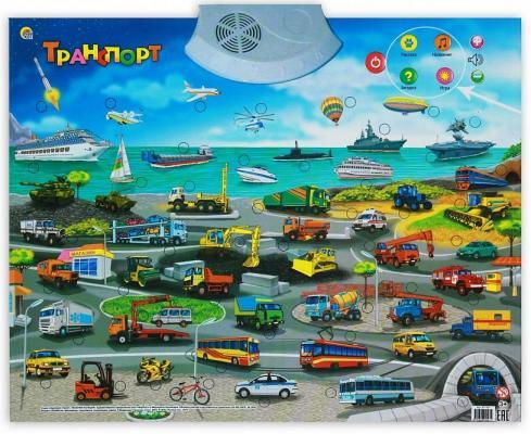 Обучающий плакат Рыжий кот Транспорт ЗП-1561 от 123.ru
