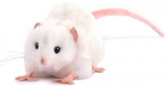 """Мягкая игрушка крыса Hansa """"Крыса белая"""" искусственный мех белый 12 см 5576"""