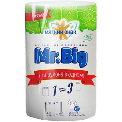 Полотенца бумажные Мягкий Знак Mr.Big без отдушки 2-ух слойная 1 шт