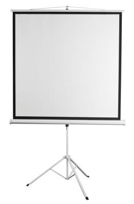 Экран переносной на штативе Digis Kontur-D DSKD-1106 200 x 200 см экран переносной на штативе digis dska 4303 kontur a 150 x 200 см