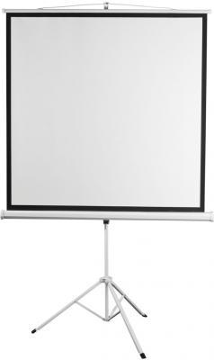 Экран переносной на штативе Digis Kontur-D DSKD-4303 150 x 200 см