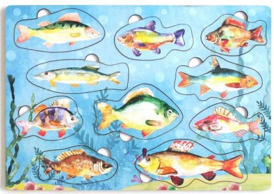 Развивающая игрушка: Рамка-вкладка Рыбы России игрушка развивающая игрушка рамка вкладка паравозик ig0119
