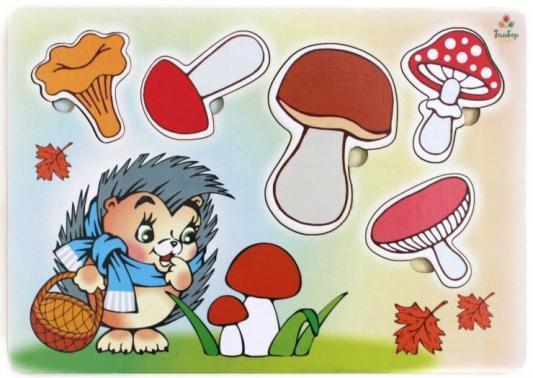 Развивающая игрушка: Рамка-вкладка Учим Грибы игрушка развивающая игрушка рамка вкладка паравозик ig0119