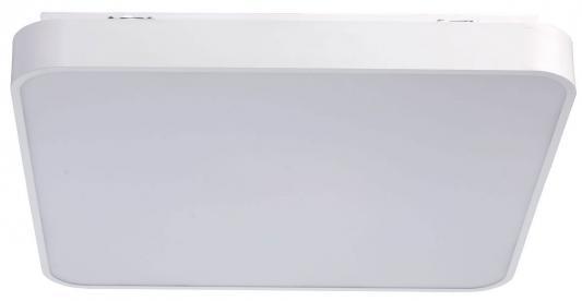 Потолочный светодиодный светильник с пультом ДУ MW-Light Ривз 674013001