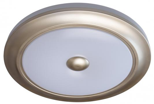 Купить Потолочный светодиодный светильник с пультом ДУ MW-Light Энигма 688010301