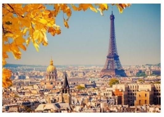 Пазлы 1000 Осень в Париже паззл castorland 1000 эл осень в париже 41663