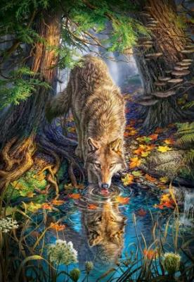 Купить Пазл 1500 Волк в дикой природе, Кастор, Пазлы-картины