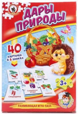 Настольная игра Русский Стиль развивающая Дары природы 03991 настольная игра развивающая русский стиль панорама каникулы в простоквашино 3472