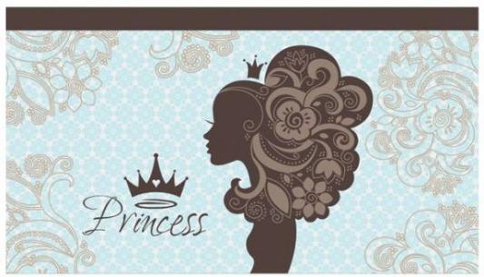 Купить Пенал-кошелёк ПРИНЦЕССА ВИНТАЖ, ткань, дизайн, краска, 195х105мм, Оникс, текстиль, для девочки, Пеналы и папки