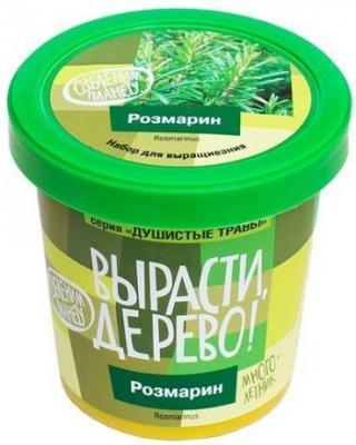 Набор для выращивания Розмарин наборы для выращивания растений вырасти дерево набор для выращивания шалфей