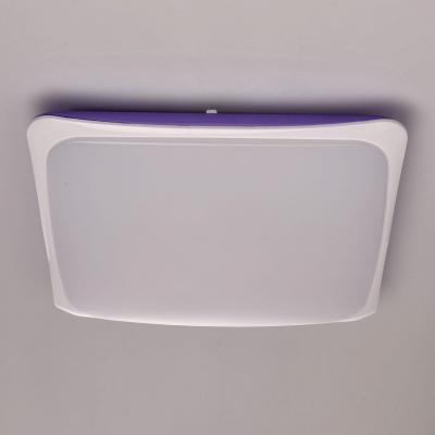 Потолочный светодиодный светильник с пультом ДУ MW-Light Ривз 8 674014501