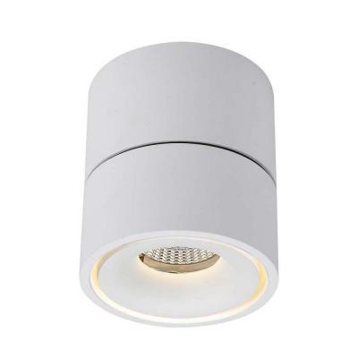 Потолочный светодиодный светильник Donolux DL18617/01WW-R White Dim