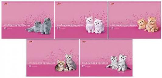 Альбом для рисования Хатбер Милые котята A4 24 листа 004077 в ассортименте принадлежности для рисования спейс альбом для рисования авто яркие внедорожники 24 листа