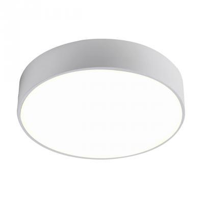 Купить Потолочный светодиодный светильник Favourite Flashled 2065-24C